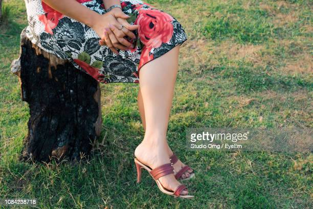 Low Section Of Woman Sitting On Tree Stump At Field