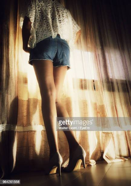 low section of woman standing at home - walter ciceri foto e immagini stock