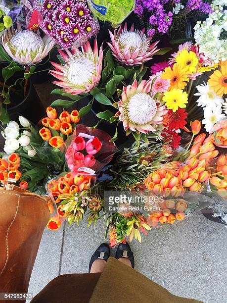 low section of woman standing by flower bouquets - danielle reid stock pictures, royalty-free photos & images