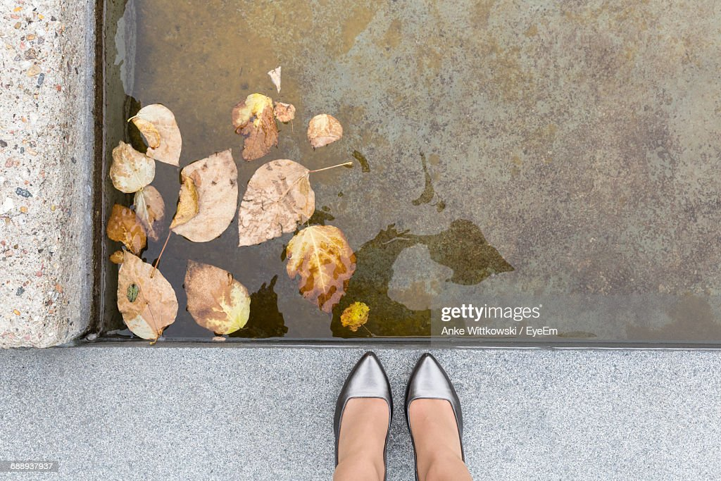 Low Section Of Woman Standing By Pond : Stock Photo
