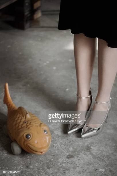 low section of woman standing by toy fish - gray shoe stock pictures, royalty-free photos & images