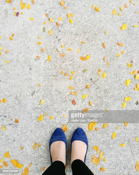Low Section Of Woman Standing By Yellow Leaves On Footpath