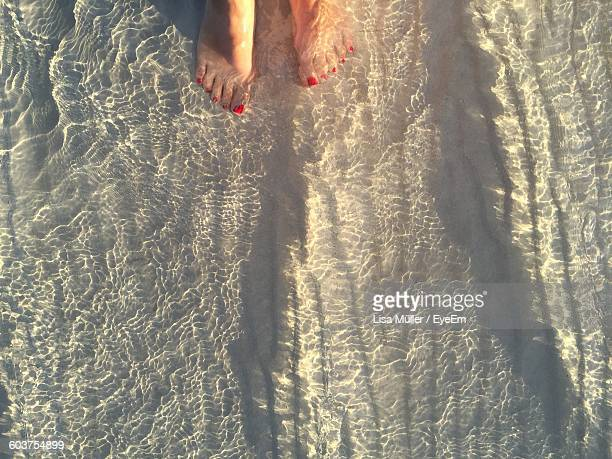 Low Section Of Woman Standing In Shallow Water