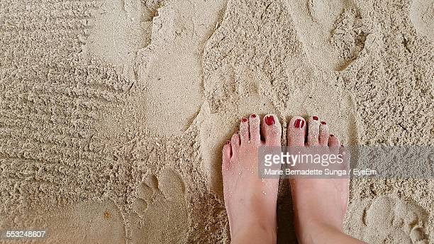 Low Section Of Woman Standing On Beach
