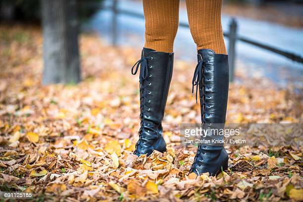 Low Section Of Woman Standing On Fallen Dry Leaves During Autumn