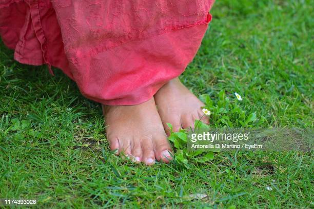 low section of woman standing on grass in field - antonella di martino foto e immagini stock