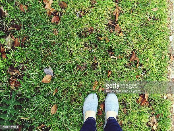 Low Section Of Woman Standing On Grass