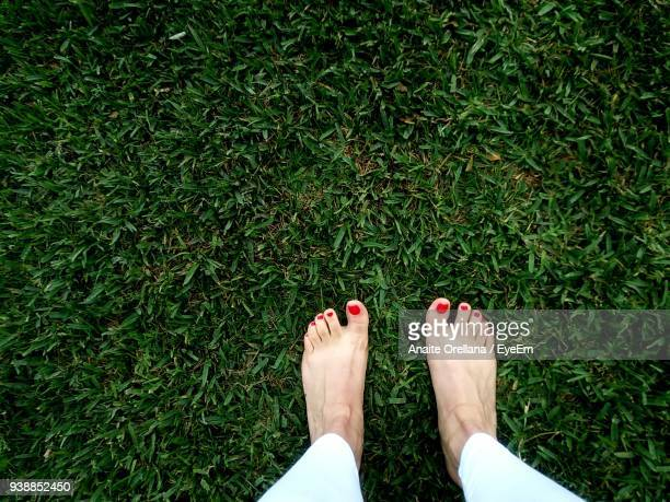 low section of woman standing on grass - scalzo foto e immagini stock