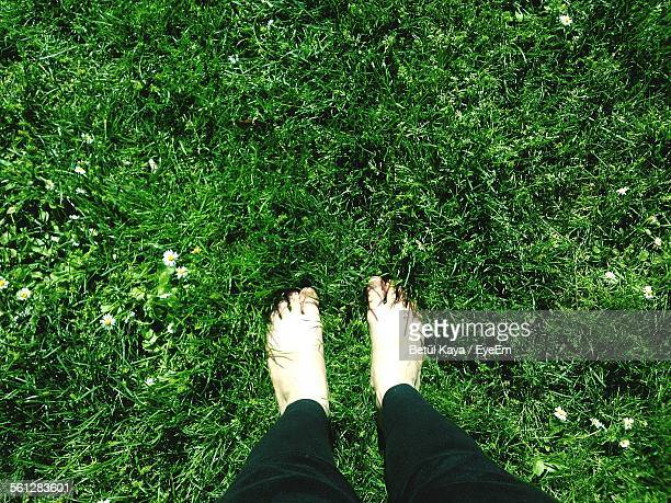 Low Section Of Woman Standing On Grassy Field At Gulhane Park