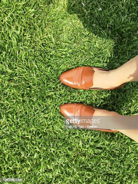 low section of woman standing on grassy field - brown shoe ストックフォトと画像