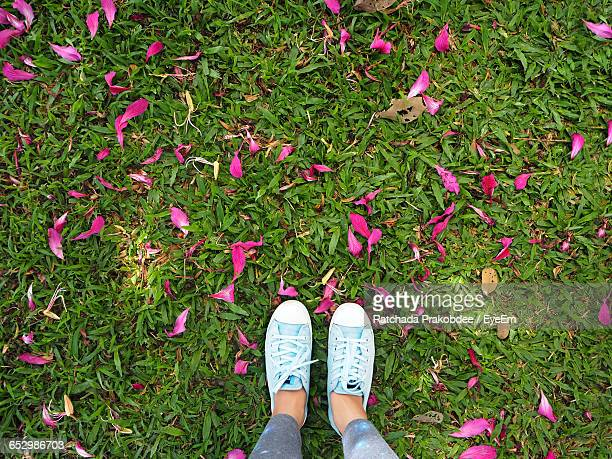 Low Section Of Woman Standing On Grassy Field