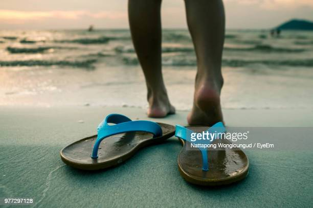 f636785f8e2752 Low Section Of Woman Standing On Shore With Flip-Flops In Foreground At  Beach
