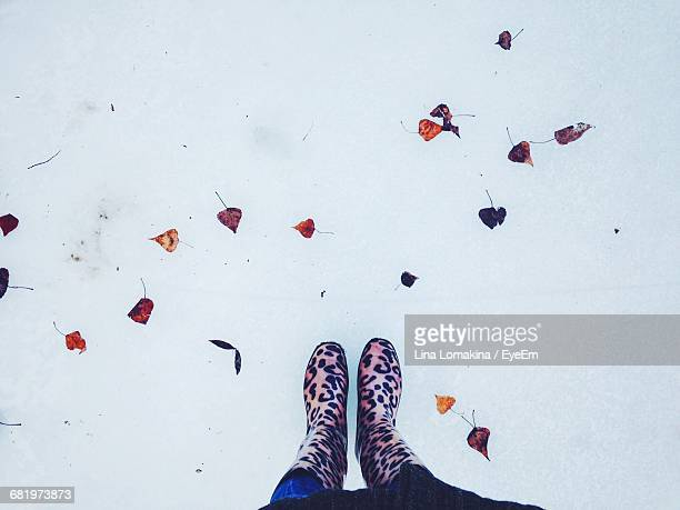Low Section Of Woman Standing On Snow Field