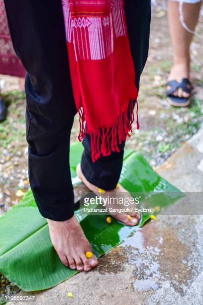 low section of woman standing on wet banana leaf - pattanasit stock pictures, royalty-free photos & images