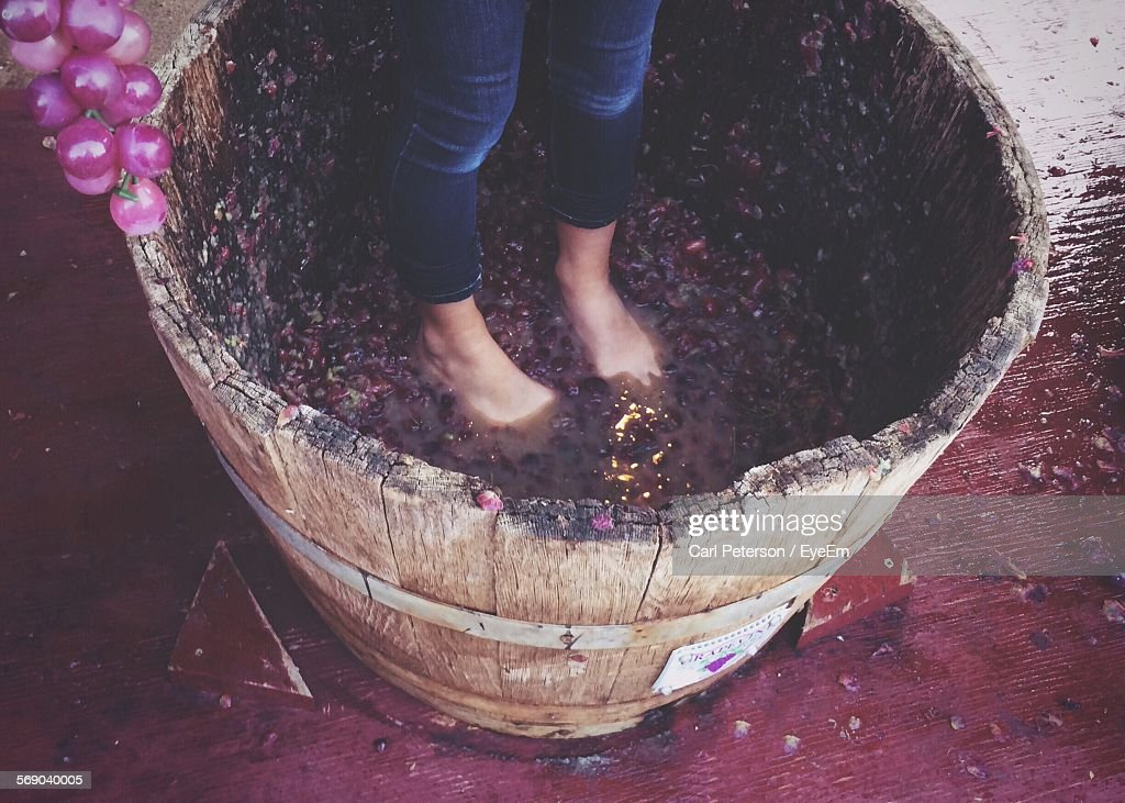 Low Section Of Woman Treading Grapes : Stock Photo