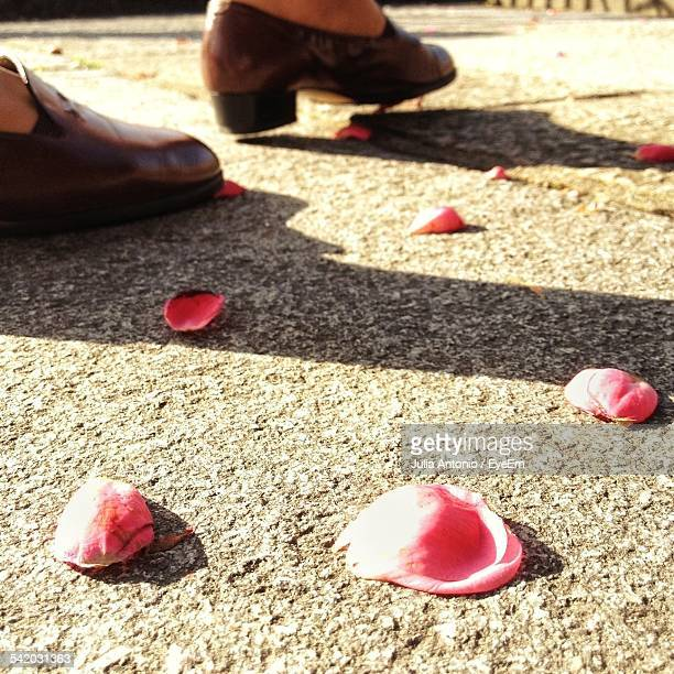 low section of woman walking on street with rose petals - julia rose stock photos and pictures
