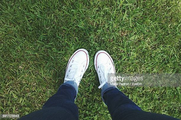 Low Section Of Woman Wearing Canvas Shoes Standing On Grassy Field