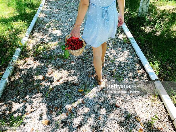 low section of woman with cherries in wicker basket walking on footpath - bortes stock pictures, royalty-free photos & images