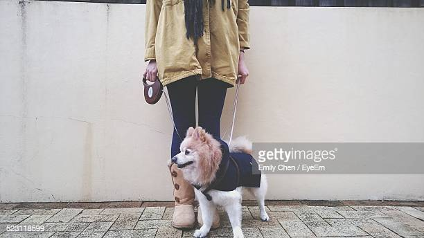 low section of woman with dog standing on footpath against wall - jacket stock pictures, royalty-free photos & images