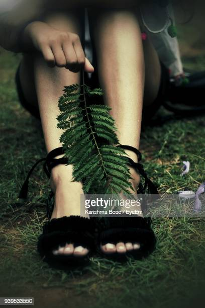 low section of woman with plant sitting on field - human leg stock photos and pictures