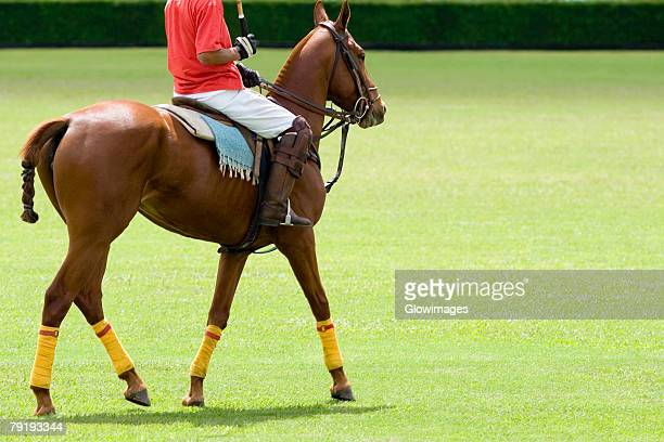 Low section view of a man playing polo