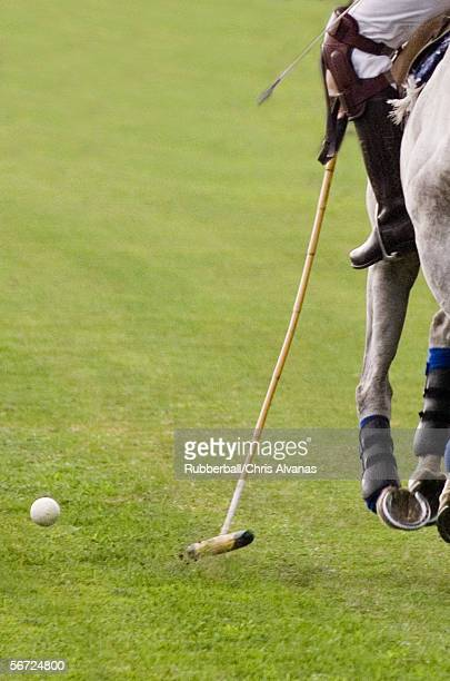Low section view of a polo player running beside the ball