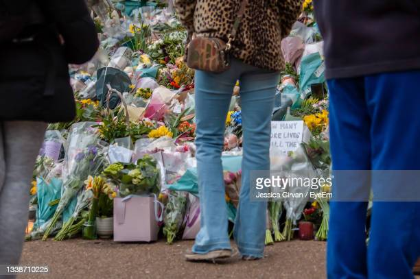 low section view of people standing by potted plants - memorial vigil stock pictures, royalty-free photos & images