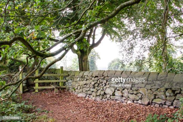 low stone wall along a footpath with gate - mulch stock pictures, royalty-free photos & images