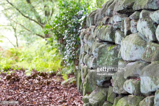 low stone wall in the english countryside - mulch stock pictures, royalty-free photos & images