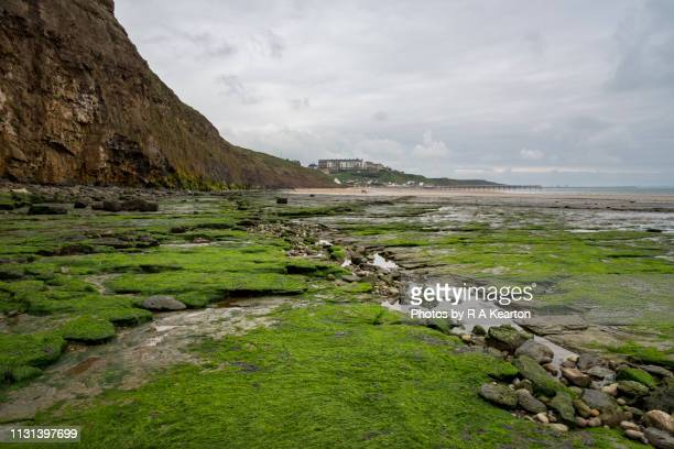 low tide at saltburn-by-the-sea, north yorkshire, england - saltburn stock photos and pictures