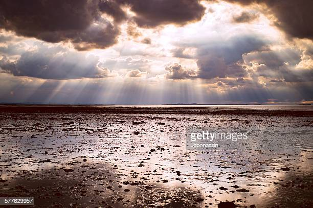 low tide at whitstable kent - jcbonassin stock pictures, royalty-free photos & images