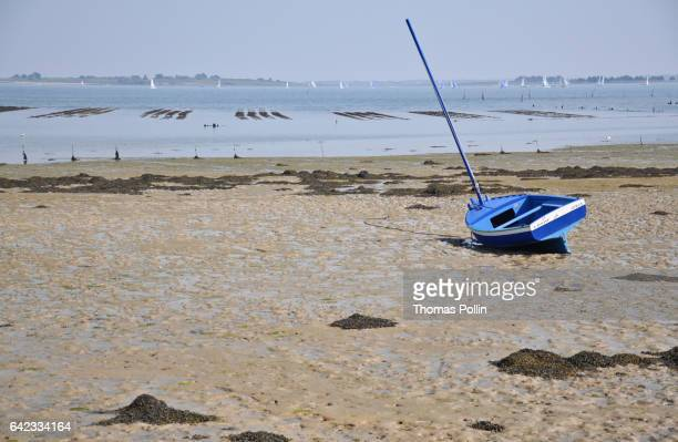 low tide on île-aux-moines - low tide stock pictures, royalty-free photos & images