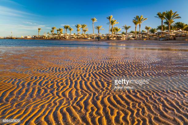 low tide on the beach during sunset. Egypt