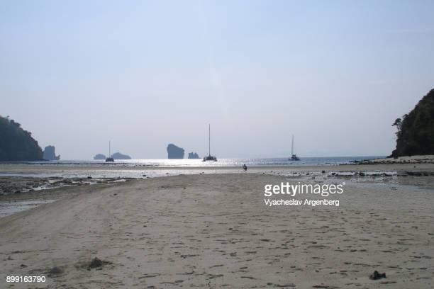 low tide sea, ko poda island, krabi, thailand - argenberg bildbanksfoton och bilder