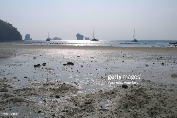 low tide sea, ko poda island, thailand - argenberg bildbanksfoton och bilder