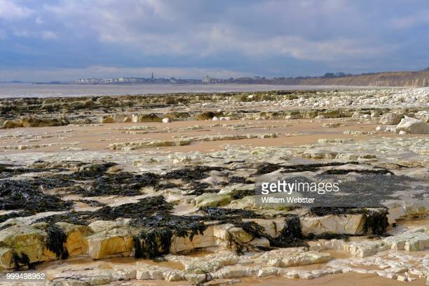 low water bridlington bay. - the webster stock pictures, royalty-free photos & images
