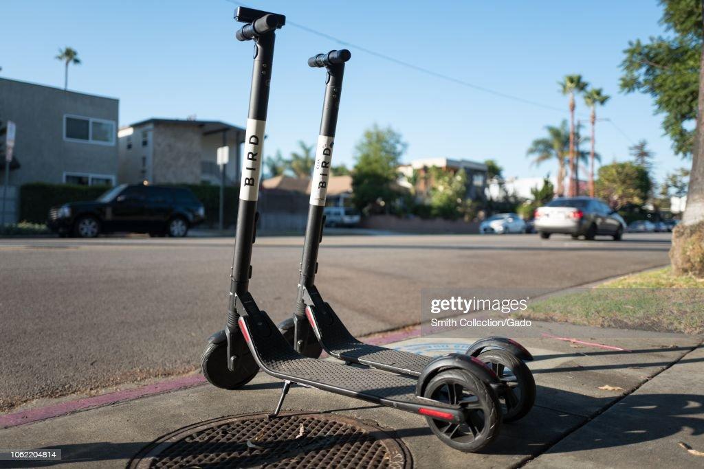 Bird Scooters : News Photo