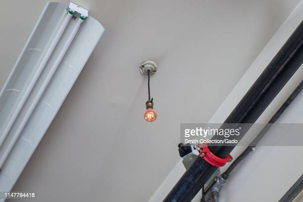 Low-angle view of the Centennial Bulb, the world's longest-burning lightbulb, originally installed in 1901, a popular tourist attraction at Fire...