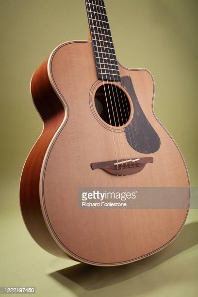 Lowden Pierre Bensusan 'Old Lady' Acoustic Guitar.