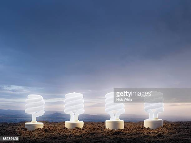 low-energy lightbulbs 'growing' against a sky back - four objects stock pictures, royalty-free photos & images