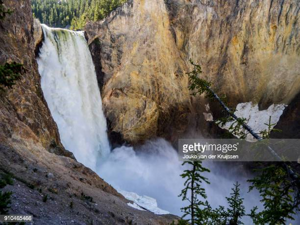 lower falls, grand canyon of yellowstone, yellowstone national park, wisconsin, united states, north america - iron_county,_wisconsin stock pictures, royalty-free photos & images