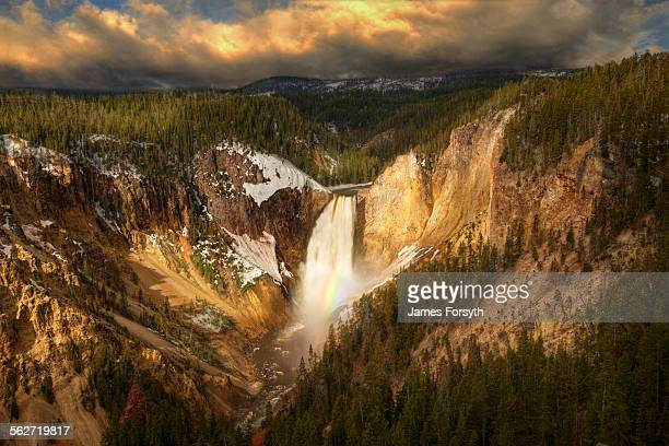 lower falls - yellowstone river stock photos and pictures