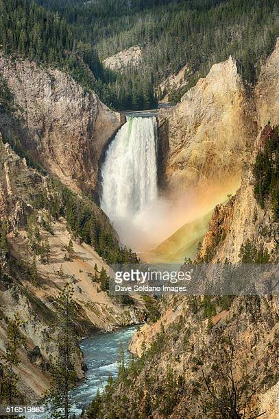 lower falls, rainbow in the mist - yellowstone river stock photos and pictures