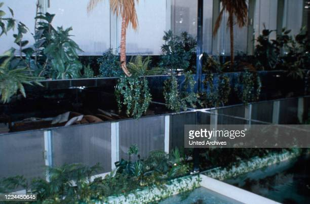 Lowers and plants at Adnan Khashoggi's office at Olympic Tower in New York USA 1986