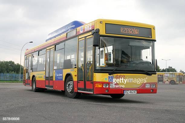 Low-floor Jelcz bus