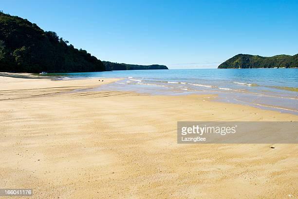 Low-tide Tide on Apple Tree Bay, Abel Tasman, New Zealand
