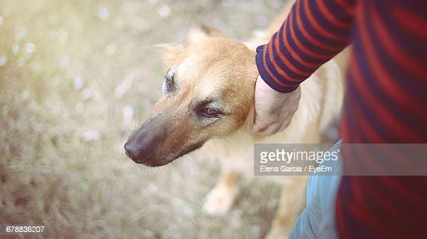 Loyal Dog Close To Male Pet Owner Outdoors