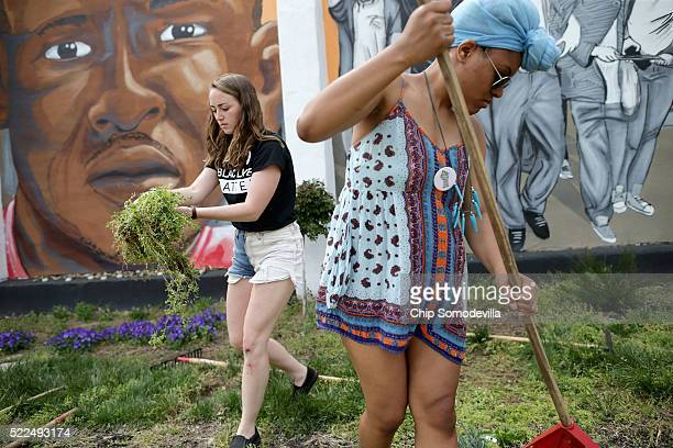 Loyola University students Kate Spence and Kassina Dwyer work to clear and landscape the garden in front of a large memorial mural of Freddie Gray...