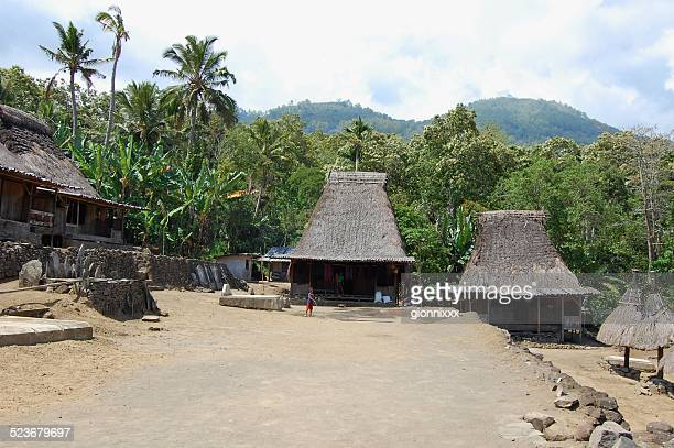 luba village, bajawa-flores, indonesia - flores indonesia fotografías e imágenes de stock