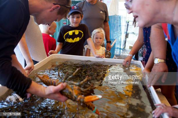 Lucas Kramer of Charleston SC and his sister Roselie check out a lobster that Kevin Richards of Rockport was holding at the touch tanks at the Maine...